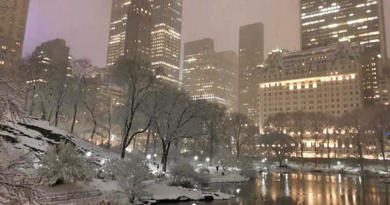 The City and the Snow